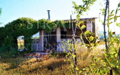 Country House - For Sale - Villena - Rural location