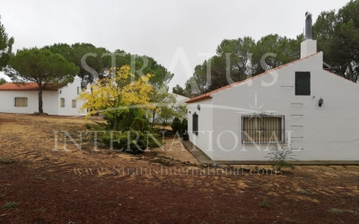 Commercial - For Sale - Albacete - Rural location