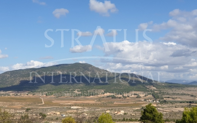 Land - For Sale - Yecla - Rural location