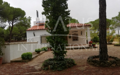 Villa - For Sale - Albacete - Rural location