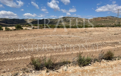 Land - For Sale - Abanilla - Rural location